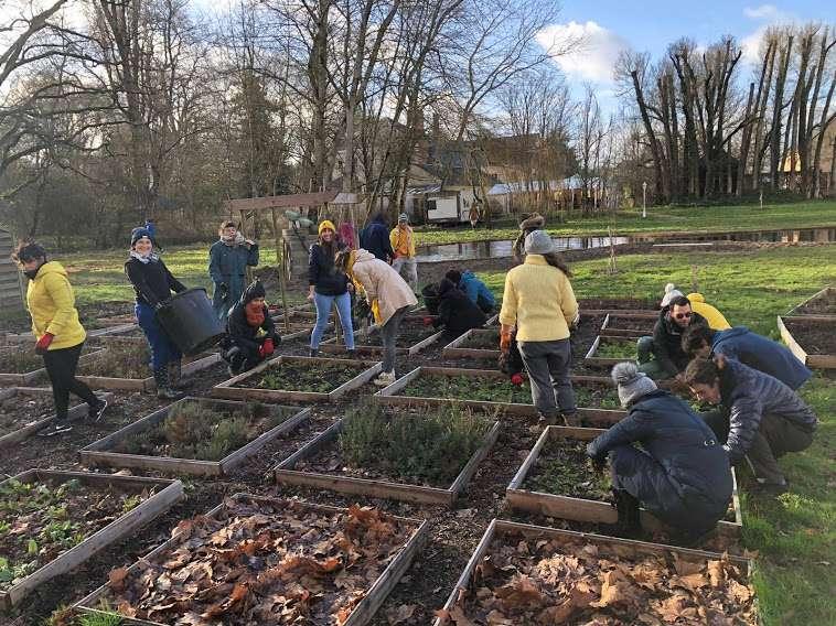 Action de jardinage participatif